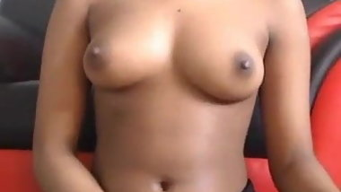 Beautiful indian Tits
